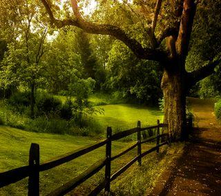 Обои на телефон романтика, пейзаж