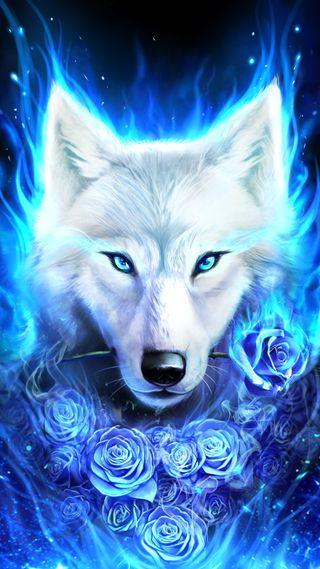 Обои на телефон love, white wolf with rose, любовь, синие, белые, розы, волк