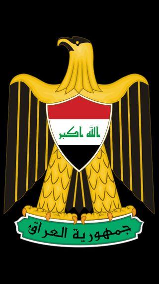 Обои на телефон сокол, прайд, орел, ирак, армия, iraqi coat of arm