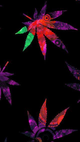 Обои на телефон черные, цветные, фиолетовые, листья