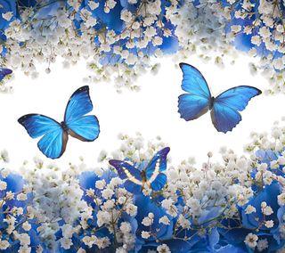 Обои на телефон природа, прекрасные, цветы, лепестки