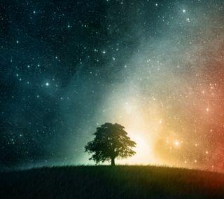 Обои на телефон рокки, природа, облака, новый, небо, любовь, крутые, звезды, звездное, дерево, starry sky tree hd, love, 2012