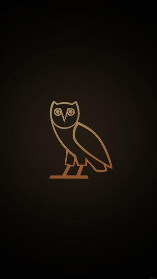 Обои на телефон сова, арт, абстрактные, owl art, artbird