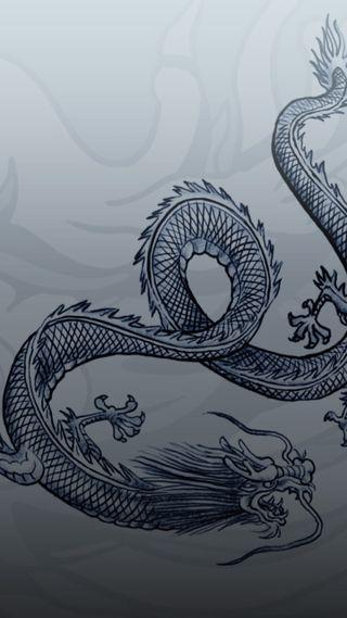 Обои на телефон китай, японские, спящий, собаки, конг, дракон, банда, triads, triaddragon, triad, hong, dragon
