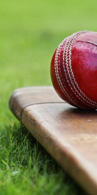Обои на телефон крикет, размытые, красые, игра, зеленые, outdoor