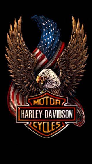 Обои на телефон харли, байкер, сша, патриотический, дэвидсон, usa harley davidson