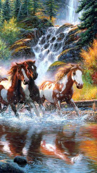 Обои на телефон лошади, пейзаж, лошадь