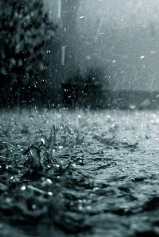 Обои на телефон капли, природа, дождь