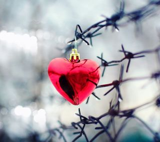 Обои на телефон боль, сердце, повредить, любовь, красые, дождь, love, esfera, alambrado