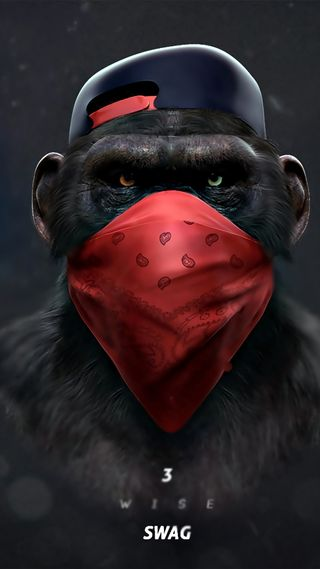 Обои на телефон обезьяны, беседа, swag, not talk, monkey swag talk