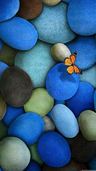 Обои на телефон бабочки, природа