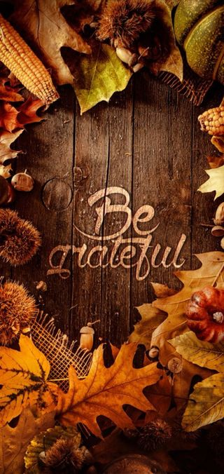 Обои на телефон будь, благодарение, осень, be grateful