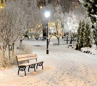 Обои на телефон парк, зима