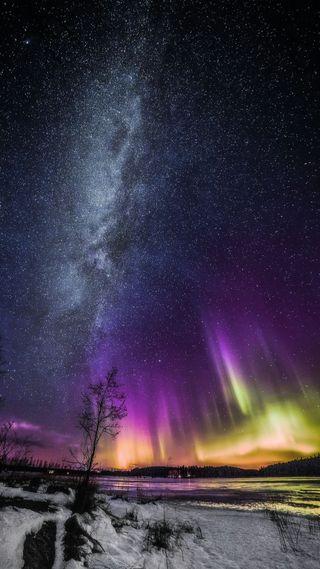Обои на телефон сияние, снег, природа, озеро, небо, зима, звезда, дерево, аврора