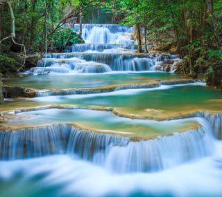Обои на телефон водопад, дерево, natureal