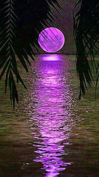 Обои на телефон рай, луна, paradise full moon