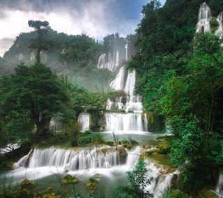 Обои на телефон джунгли, природа, лес, дерево, водопад, вода, jungle forest