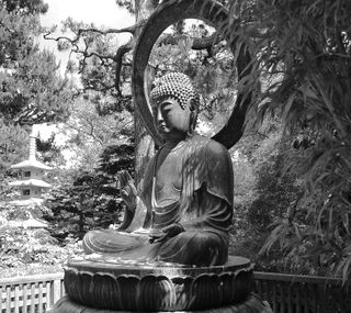 Обои на телефон дзен, будда, photograph, bw buddha