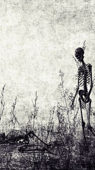 Обои на телефон скелет, одиночество