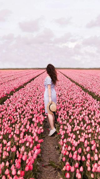 Обои на телефон настроение, цветы, природа, поле, люди, девушки, брюнетка