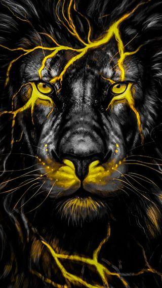 Обои на телефон лицо, лев, коты, животные, желтые, черные, lion yellow, big