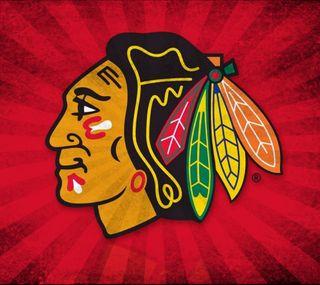 Обои на телефон перья, чикаго, хоккей, спортивные, логотипы, hawks, blackhawk logo 1, blackhawk