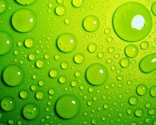 Обои на телефон мокрые, капли воды, капли, зеленые, дождь, вода
