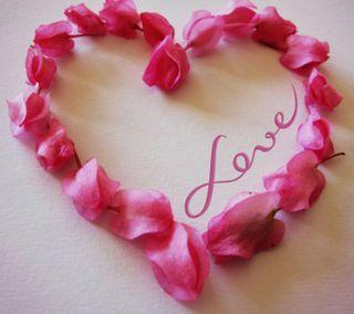 Обои на телефон лепестки, чувства, цветы, сердце, приятные, прекрасные, любовь, крутые, высказывания, love