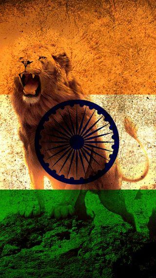 Обои на телефон indian army, military service, флаг, лев, король, армия, индия, военные, индийские, военно морские