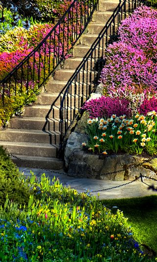 Обои на телефон сад, цветные, природа, весна, hd