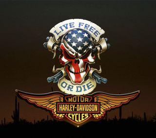 Обои на телефон череп, харли, флаг, сша, поездка, дэвидсон, байк, арт, usa, us, ride a harley, motor, ha, art