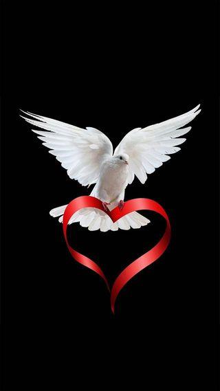 Обои на телефон христос, птицы, любовь, love, holyspirit