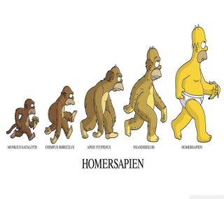 Обои на телефон человек, обезьяны, комедия, мультфильмы, забавные, гомер, банан, sapien, homersapien
