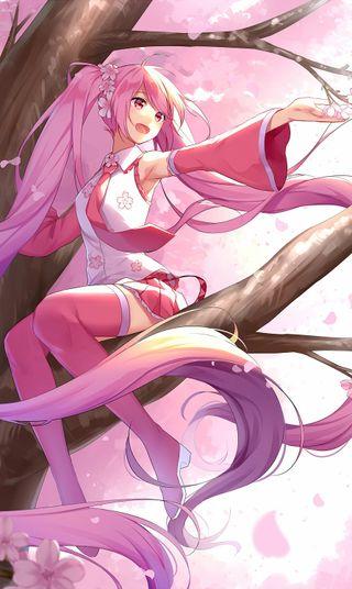 Обои на телефон хацунэ, сакура, розовые, мику, дерево, девушки, вокалоид, аниме, sakuramiku, id56260635