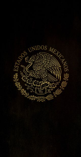 Обои на телефон radyz, politic, eum, мексика, страна, мексиканские, щит