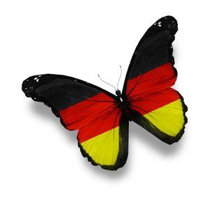 Обои на телефон яркие, черные, флаг, немецкие, крылья, желтые, белые, бабочки, german flag, german butterfly, black yellow