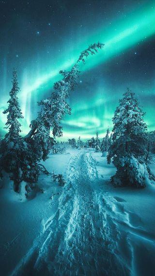 Обои на телефон аврора, снег, природа, зима, деревья