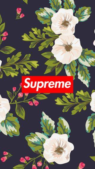 Обои на телефон минимализм, цветы, винтаж, supreme