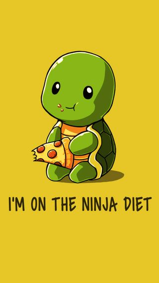 Обои на телефон черепашки ниндзя, черепаха, милые, cute turtle