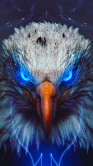 Обои на телефон орел, животные, арт, art