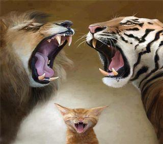 Обои на телефон животные, mascotas, animales 006