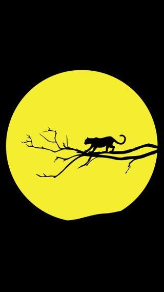 Обои на телефон темы, черные, тигр, символ, мяч, луна, логотипы, желтые, yellow moon