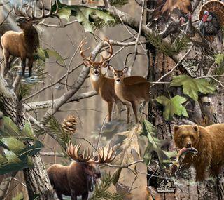 Обои на телефон камуфляж, спорт, охота, олень, на улице, медведь, elk