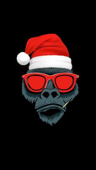 Обои на телефон очки, череп, рождество, планета, обезьяны, крутые, зоопарк, животные, swag, christmas monkey