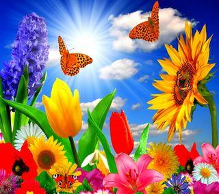 Обои на телефон солнечный свет, цветы, лето, бабочки