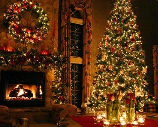 Обои на телефон дерево, снег, рождество