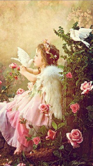 Обои на телефон небеса, цветы, розы, розовые, голубь, ангел, angelic, angel smalls