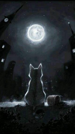 Обои на телефон городские, темные, природа, мстители, кошки, город