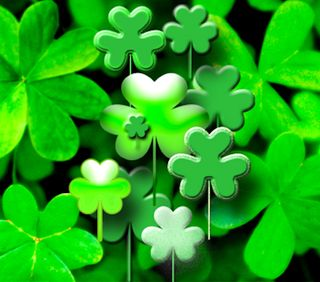 Обои на телефон трилистник, патрик, клевер, ирландские, зеленые, shamrocks, blarney