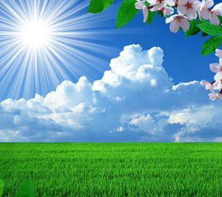 Обои на телефон весна, природа, поле, пейзаж, spring on the field